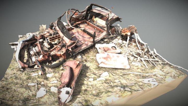 Car wreckage Citroen DS 3d photogrammetry 3D Model