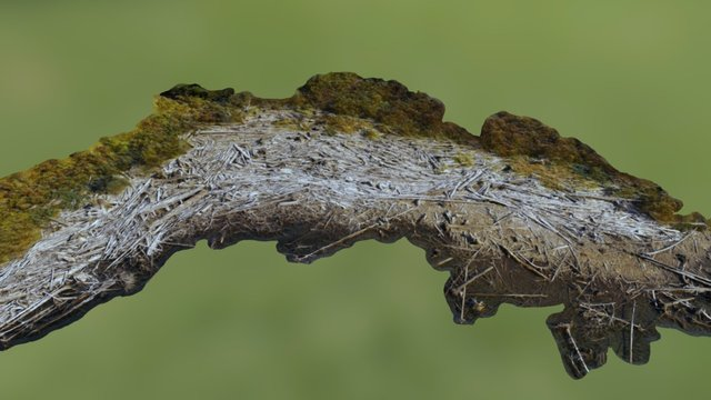 Cowichan Lake Log Jam 3D Model