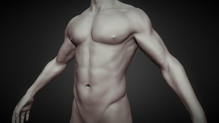 Male body base mesh 3D Model