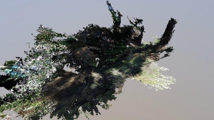 Garden part 3 3D Model