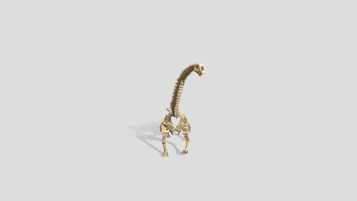 Low Poly Brachiosaurus Skeleton 3D Model