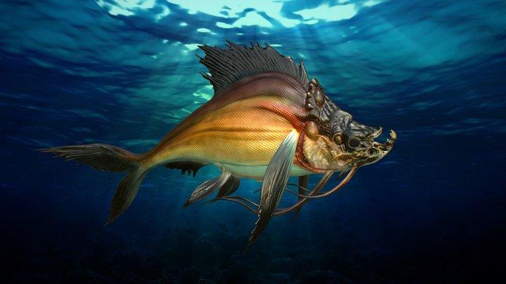 MONSTER-FISH 3D Model