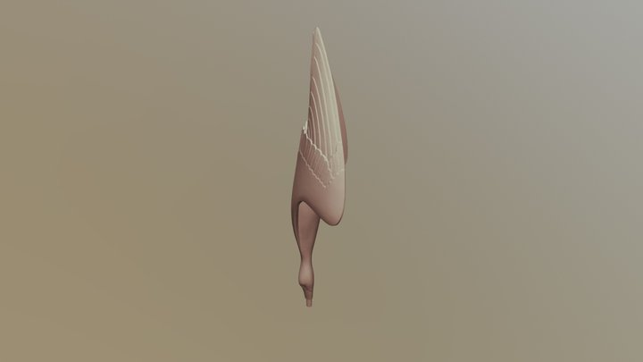 Tom Leaper Gannet 3D Model