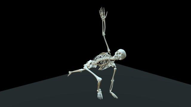 Dancing Skeleton 3D Model