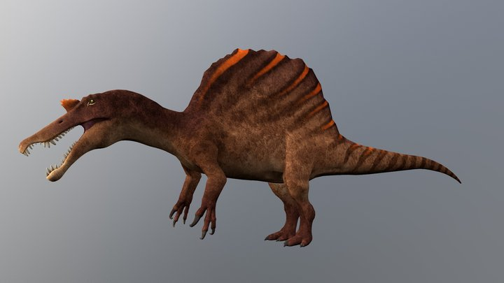 Spinosaurus 3D Model