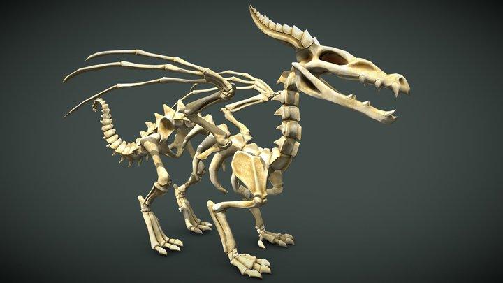 Dragon Skeleton 3D Model