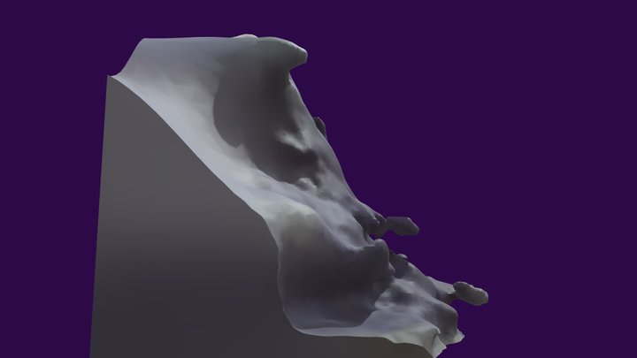 Mushroom 3D Model