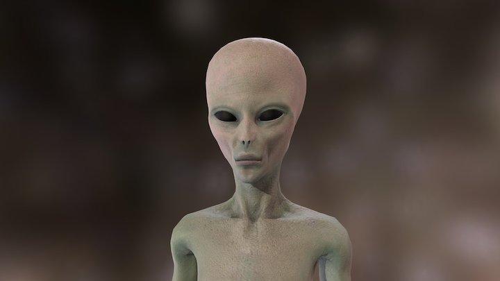 Alien Grey 3D Model