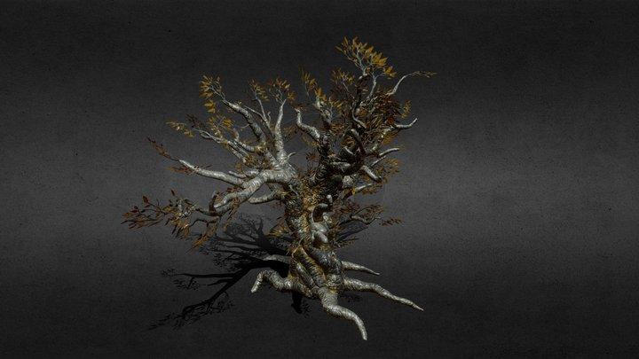 Ancient Tree 3D Model