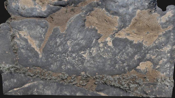 Flat-lying Petroglyph Panel (LA 57184)