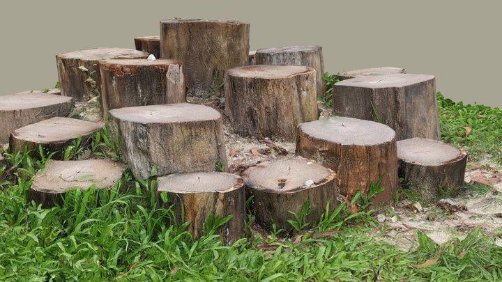 Circle of trunks 3D Model