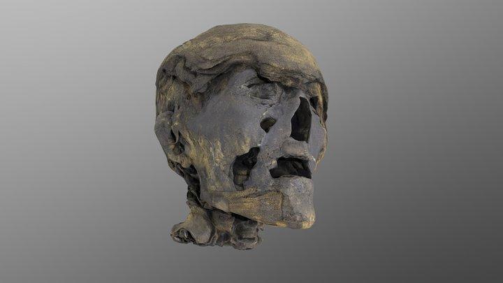 Scanned Ancient Mummy Head /Skull/ 3D Model