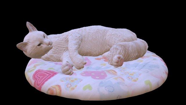 Cat 11 2 3D Model