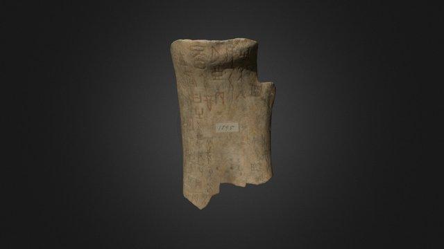 Oracle Bone, Or 7694/1595 3D Model