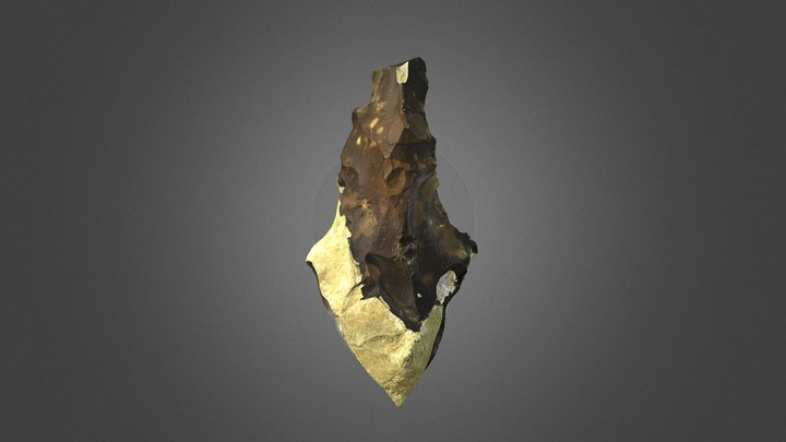 Handaxe (Cagny La Garenne, France) 3D Model