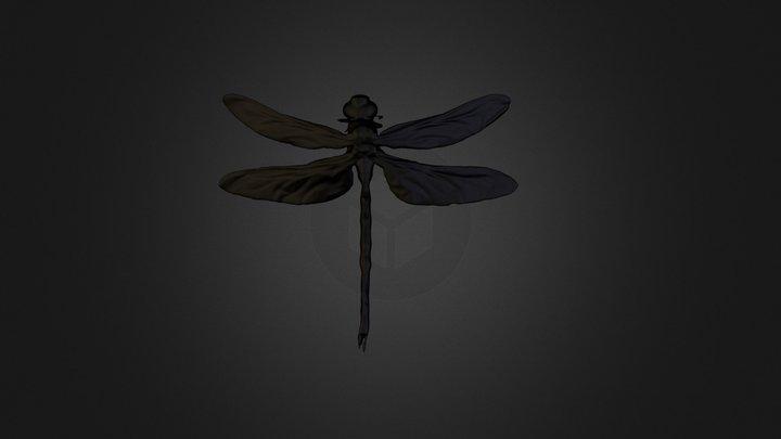 3D Scan Dragon Fly 3D Model