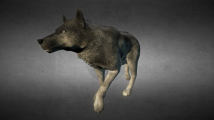 Nordic Wolf 3D Model