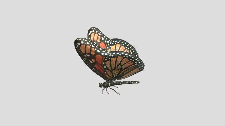 Butterfly Wael Tsar 3D Model