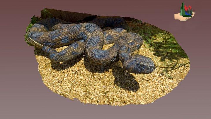 FS1265 Bronze Rattlesnake statue 3D Model