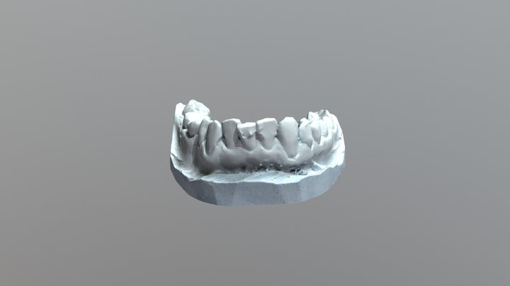Mandible_New 3D Model