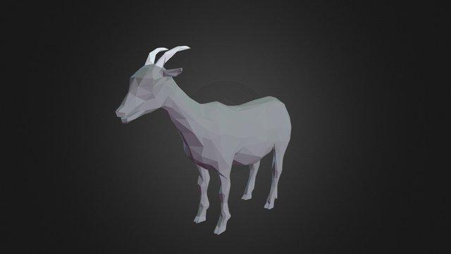 Goat - Low Poly Test 3D Model