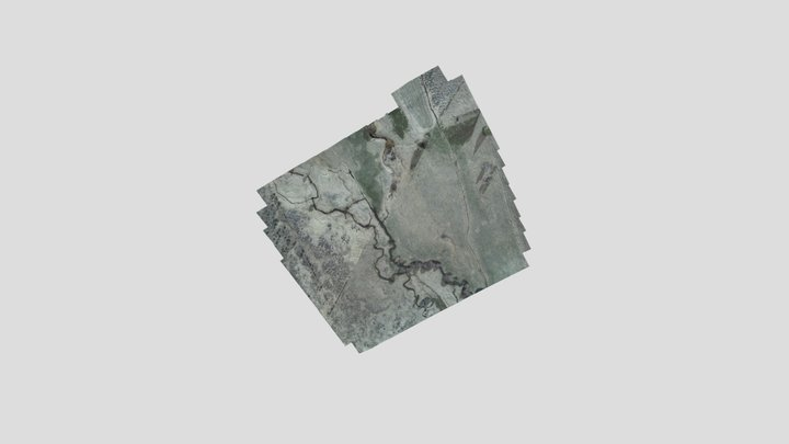 Otley_Sample_042321 3D Model