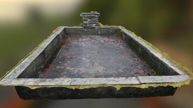 Overgrown Pool 3D Model