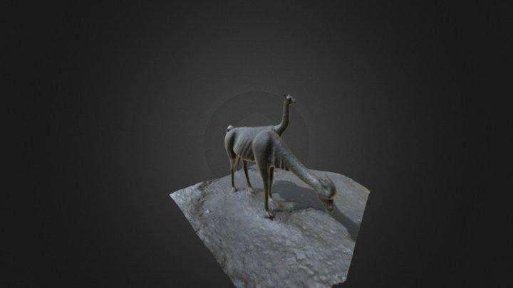 Vicuñas 3D Model
