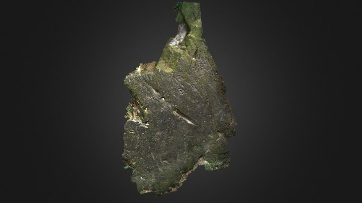 Johnstone, Craigston Wood 3D Model