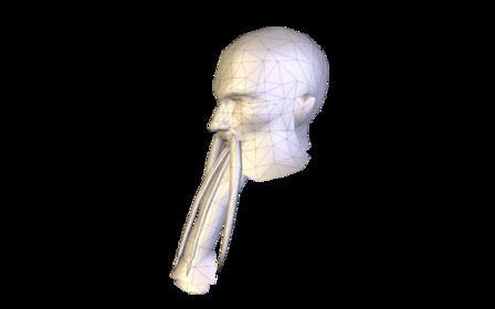 59 3D Model