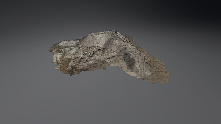 3D Oberflächenmodell einer Miete 3D Model