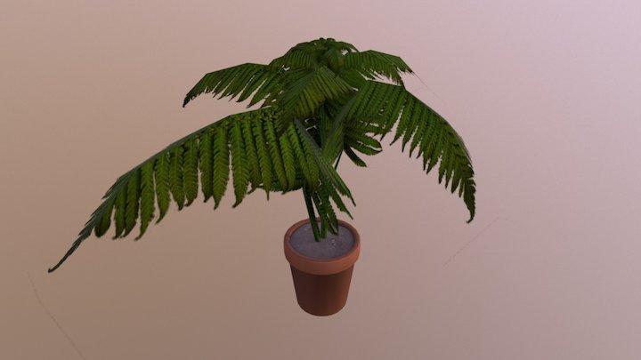 Pot Fern 3D Model