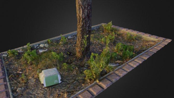 Suburban ecosystem 3D Model