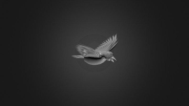 NURBS Bird 3D Model