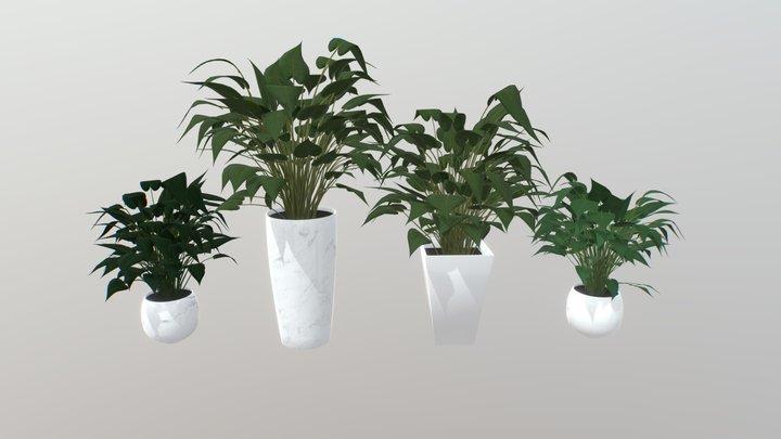 Arrowhead Plant Kit 3D Model
