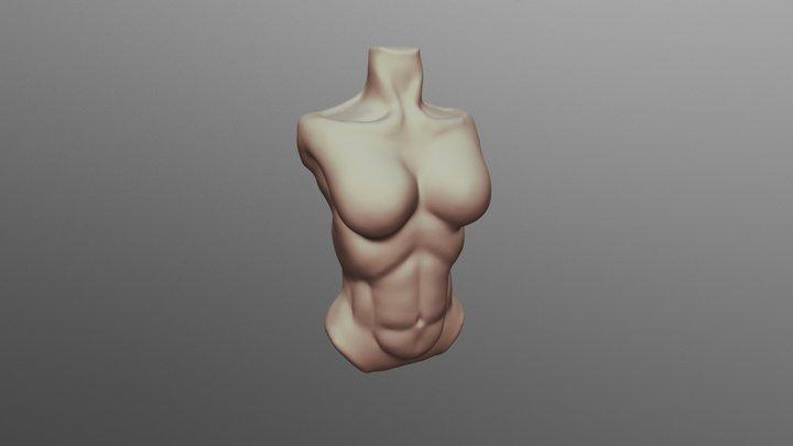 #SculptJanuary18 - Day 29: Torso Female 3D Model