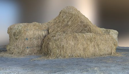 Hay bales 3D Model