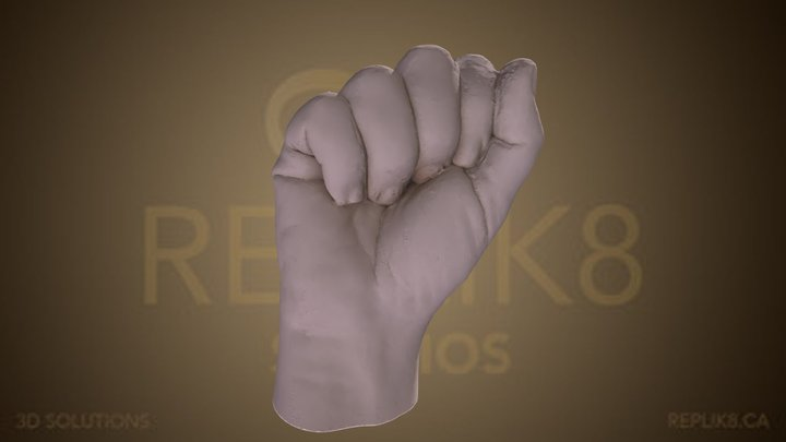 Hand Cast 3D Model