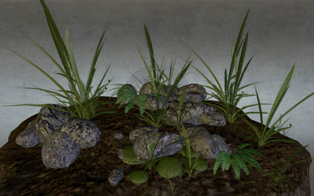 Rocks and Plants 3D Model