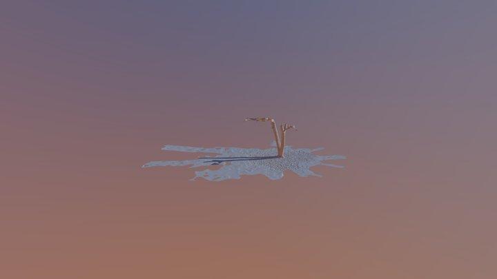 Tree Photo Scan 3D Model