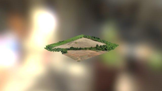 Sitio Primavera 3D 3D Model
