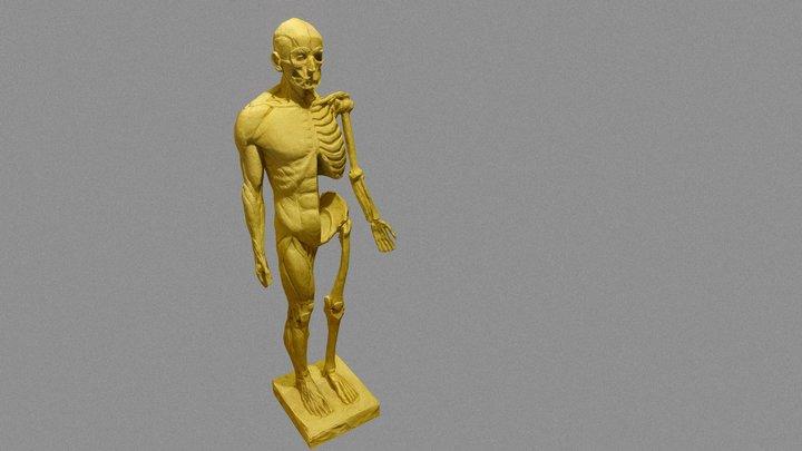 Ekorshe 3D Model