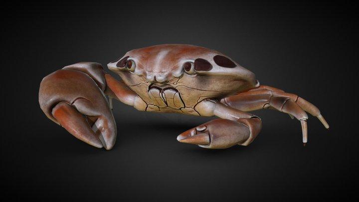 Crab 7- Eleven 3D Model