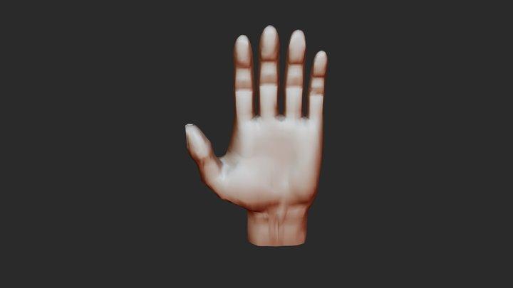 3D Hand Jorrit Boonen 3D Model