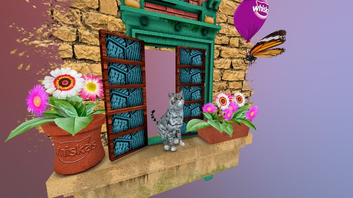 Cat british young silver tabby / rigged 3D Model