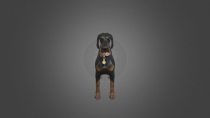 Rora - Dobermann 3D Model