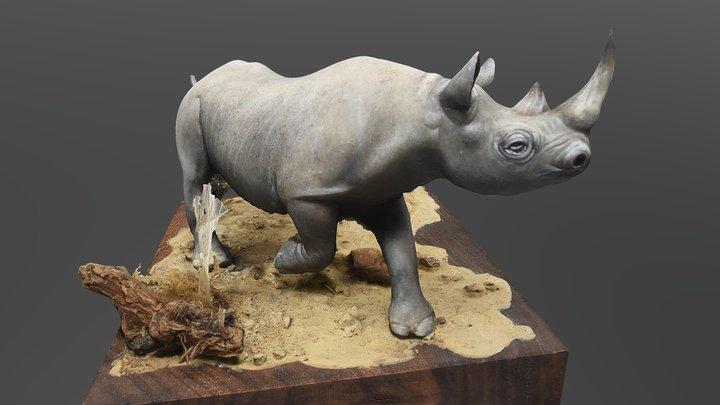 Le rhino c'est rosse 3D Model