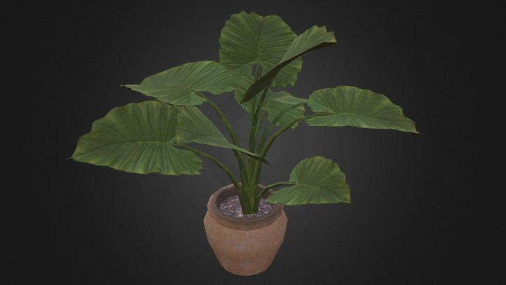 potted_plant-1 3D Model