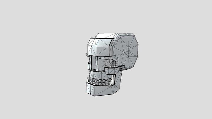 Practice Skull 3D Model