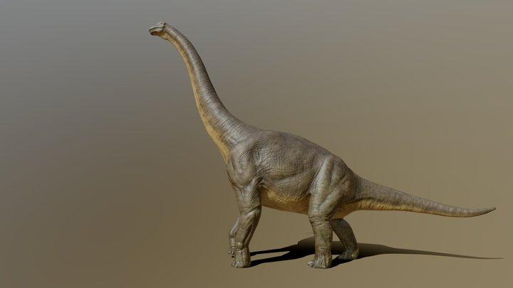 Brachiosaurus (giraffatitan) 3D Model